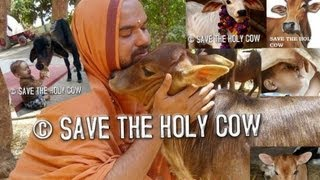 Shree Raghaveshwara Bharathi Swamiji -SAVE THE HOLY COW