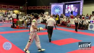 Roland Kiss HUN v Kevin Walker USA WAKO World Champioships 2015