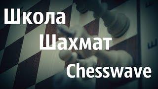 Шахматы онлайн\ Решаем задачи по шахматам Урок №1