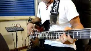 Spandau Ballet (Only When You Leave) - cover bass