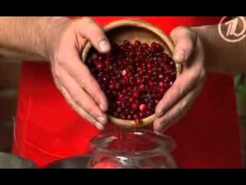 Яблоки моченые рецепт домашние