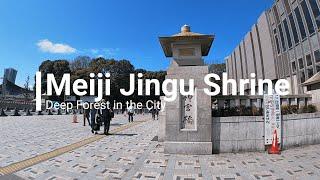Meiji Jingu Shrine in Tokyo - Japan Culture Guide official video channel