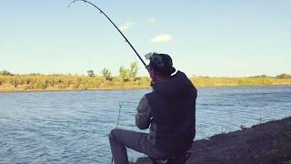 Ловля сазана и карася Рыбалка в сильный ветер часть 2 Рыбалка в Астрахани