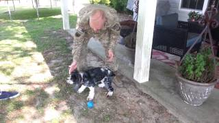 Colonel Scott Halverson And Pepper - Welcome Home!