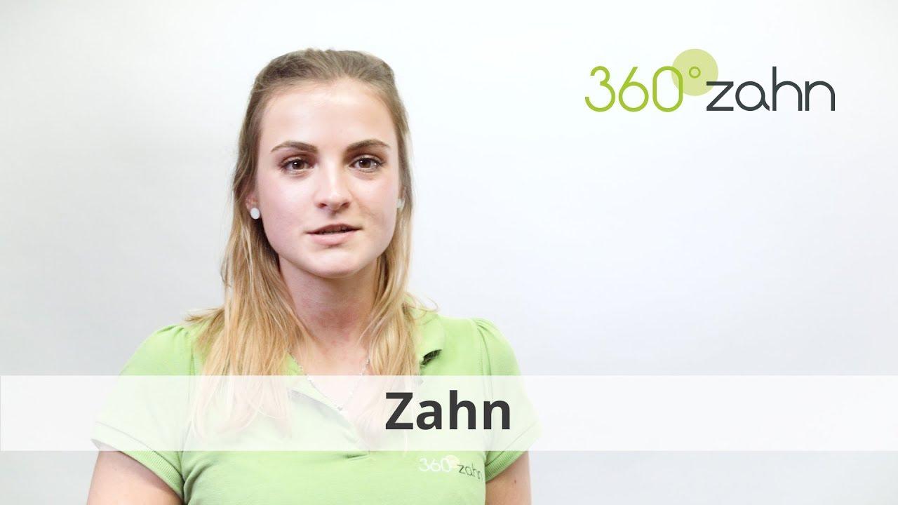Zahn Was Ist Ein Zahn Dental Lexikon 360zahn Youtube
