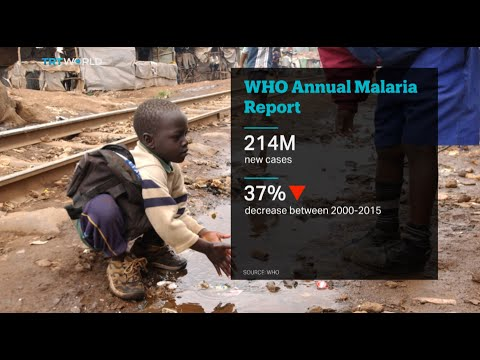 TRT World: World Health Organisation Annual Report
