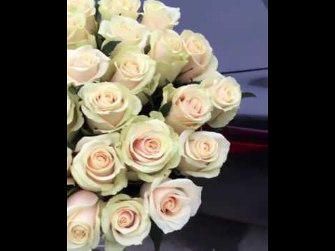Нежные розы в шляпной коробке кремового цвета ♡ bb43.ru