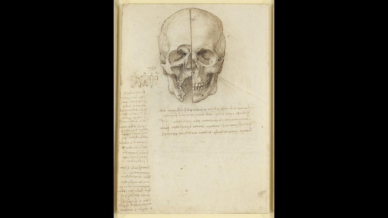 Leonardo da Vinci: Anatomist - YouTube