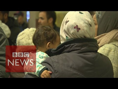 Sweden's dilemma over immigration - BBC News