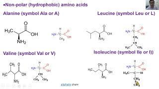 胺基酸是什麼2-生命科學暨生物科技學系唐世杰