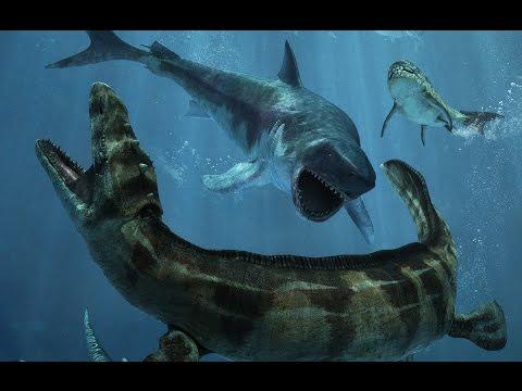 Asylum 5D   Oceanarium Prehistoryczne   Tajemnicze podziemie 5D   Złote Krople