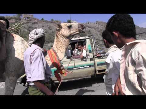 Expedition Yemen By Camel; the Pilot