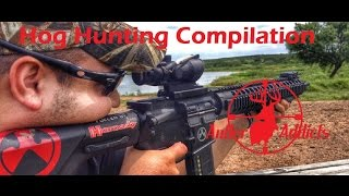 Hog Hunting Kill Compilation With AR-15 and Bow