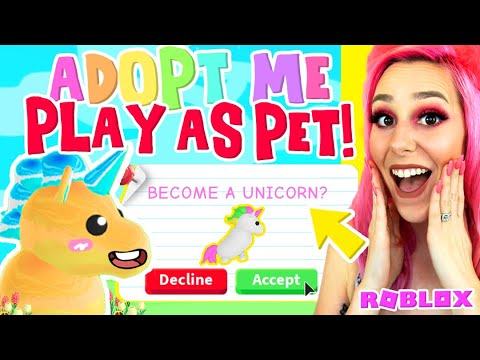 how to adopt pets