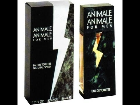 9d29f315af Cheap but Good Fragrance!  Animale Animale  for Men - Review Unboxing First  Impressions