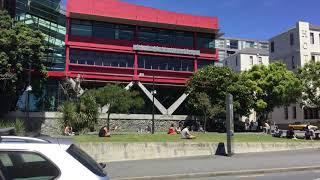 Summer on campus 2019