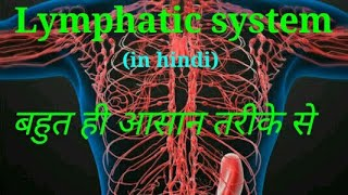 Lympathic system. आसान तरीके से समझे। हिन्दी में