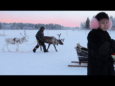 A Week In The Arctic | Finnish Lapland