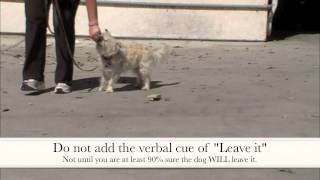Leave It: Clicker Dog Training - Shapefest 2012