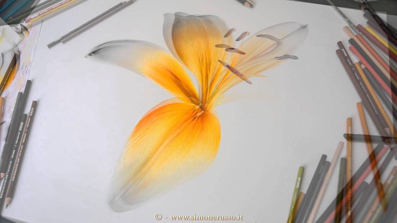 Bagliore Di Luce E Colore Fiore Artistico Disegno Realizzato Con