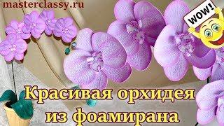 Super! Foam flowers: orchids. Красивая орхидея из фоамирана своими руками: видео урок