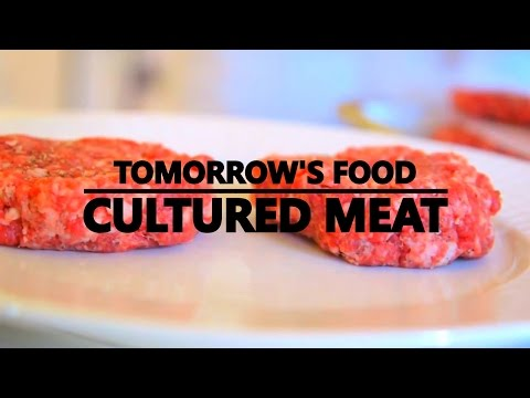 TOMORROW'S FOOD: CULTURED MEAT