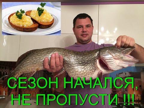 Щучья икра. Как правильно, быстро разделать рыбу и вкусно приготовить икру из щуки. #Икращучья