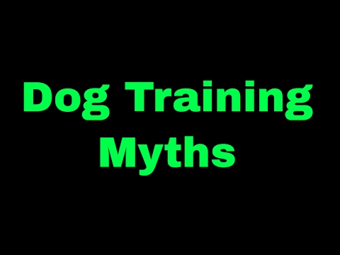 Dog Training Myths and Mistakes
