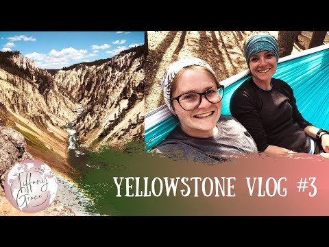 YELLOWSTONE Vlog #3 // Grand Canyon of the Yellowstone and a GRIZZLY BEAR in Hayden Valley!