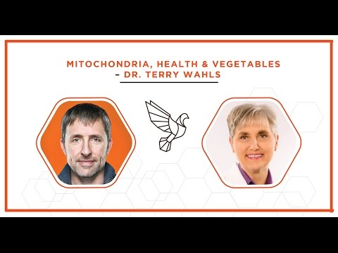 Dr. Terry Wahls on Mitochondria, Health & Vegetables