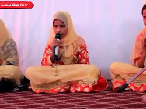 Top 10 Schools In Kashmir / Sopore Talent Part 2