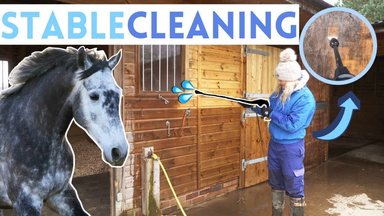 Download Pressure Washing The Whole Stables! Renovation Series AD | This Esme