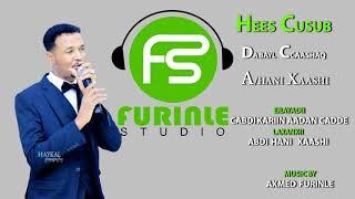 CABDI HANI XAASHI DABAYL CAASHAQ OFFICIAL SONG 2019 - Furinle studio