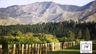 Popular Videos - Sauvignon blanc & Wine tasting