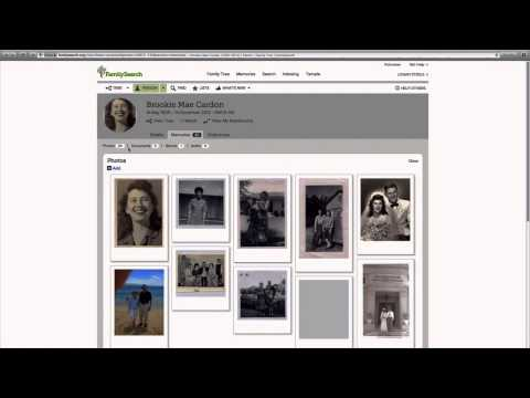 FamilySearch 101 - BASICS & Finding A Name