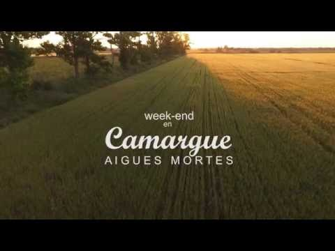 Camargue by drone