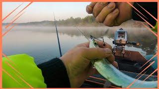 Рыбалка на Вятке Хороший клёв чехонь и сопа Июль 2020