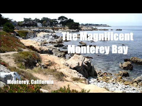The Magnificent Monterey Bay - Monterey California - Travel and Adventures