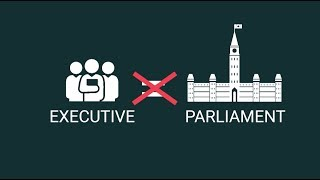 How do minority governments shape parliament?