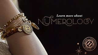 Learn More About Numerology | ALEX AND ANI