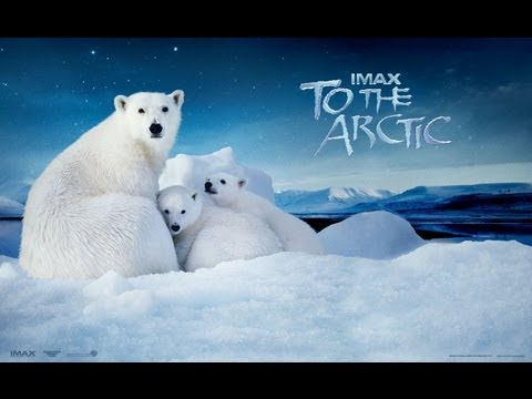 To The Arctic 2012 IMAX 1/3 (Exclusive)