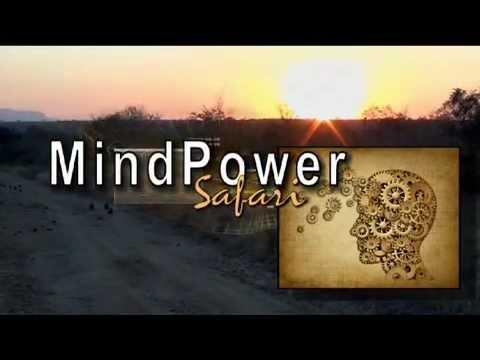 Africa's Executive Thought Leadership Seminar - MindPower Safari