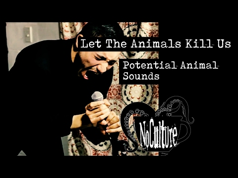 LET THE ANIMALS KILL US - Potential Animal Sounds | Live @ No Culture
