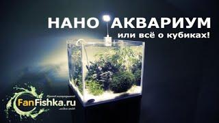 Нано аквариум или все о кубиках видео-обзор!