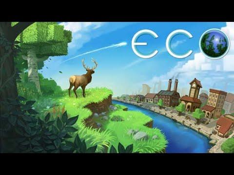 Ecografie - Aristocratvet