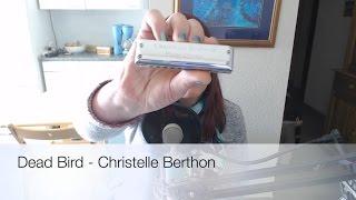 Dead Bird - Christelle Berthon (Dannecker Centurion in D)