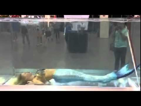 Found the mermaid in tank fish lady youtube for Mermaid fish tank