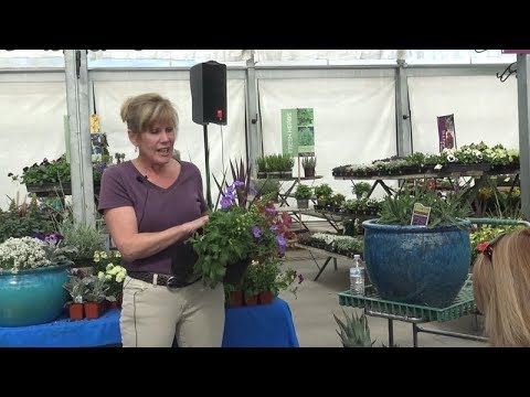 Advanced Container Gardening Class