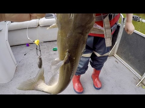 How to Catch BIG Catfish  – Baits, Rigging, Cast Net Tutorial, and Location (ft. Catfish and Carp)