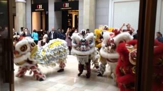 Lion dance - Chinese New Year 2015 at Westfield Valley Fair, Santa Clara